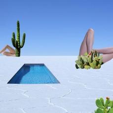 cactus, salt and meat