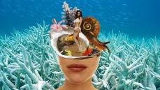 oyster's flesh